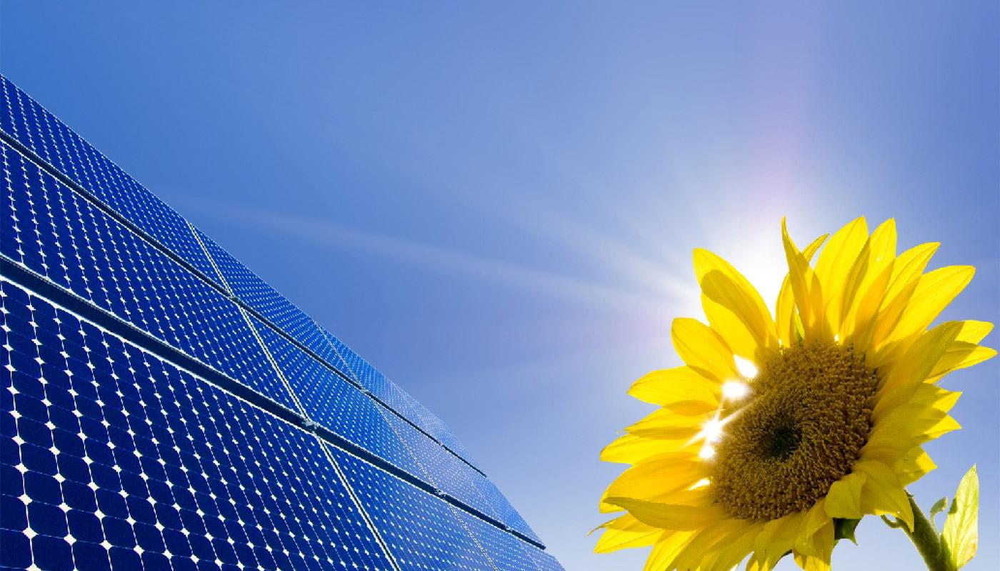 Sundigo Solar Solar Product Leader In Lucknow